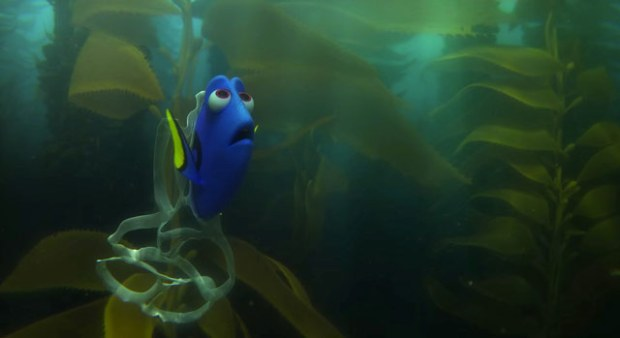 1 Finding Dory 6